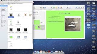 iBook Author