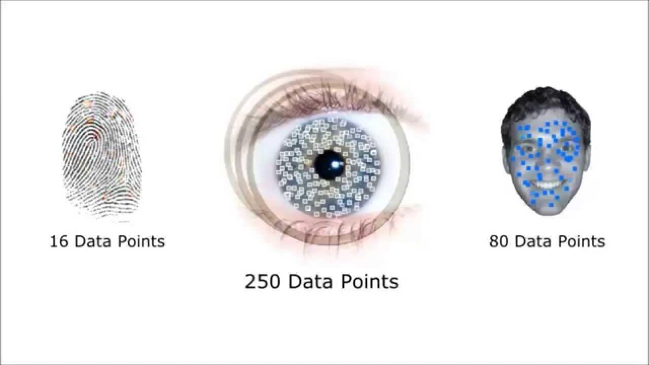 Система биометрической идентификации в действии