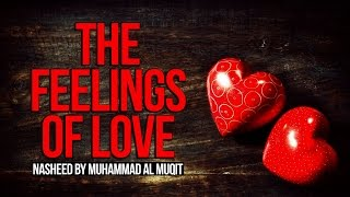 The Feelings of Love – Muhammad al-Muqit