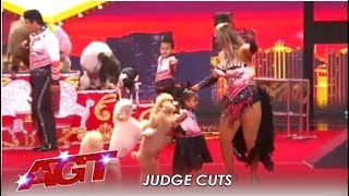 Dominguez Poodles: Simon's Favorite Dog Act Ends In CHAOS! | America's Got Talent 2019