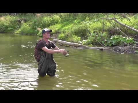 перспективные места для ловли голавля