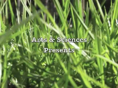 Arts&Sciences Official Music Video STEPCHILD