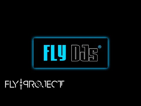 Fly Project - GoodBye FLY DJs Remix