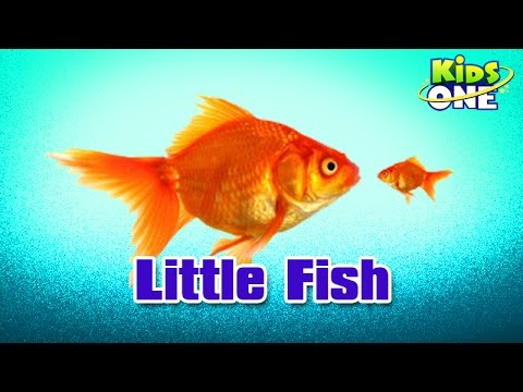 Little Fish - Hindi Animated Stories - Kids Animated Stories video