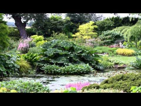 The Beth Chatto Gardens Benfleet Essex