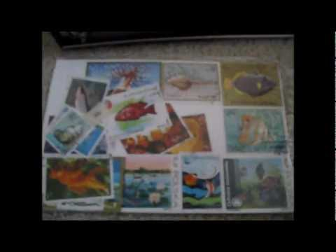 Intro to Stamp Collecting and How to Soak Used Stamps off of envelopes