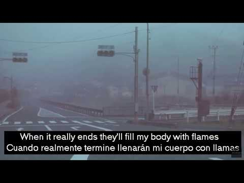 We Found Two Dead Swans and Filled Their Bodies with Flowers - Teen Suicide    Lyrics/Letra