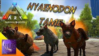 POWER PUPS - HYAENODON TAME - BREEDING - PATCH 258 - S3 E39 -[ Ark Update 258 Gameplay]
