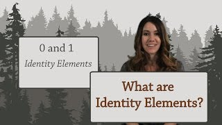 Arithmetic: What are Identity Elements?