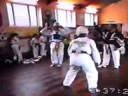 Kim webster Taekwondo mini clip