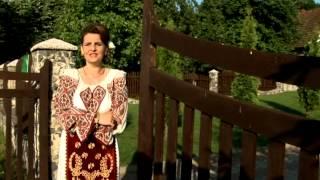 Mihaela Petrovici - Mai un an imi bace-n usa