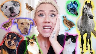 FEEDING ALL OF MY ANIMALS NIGHT ROUTINE!