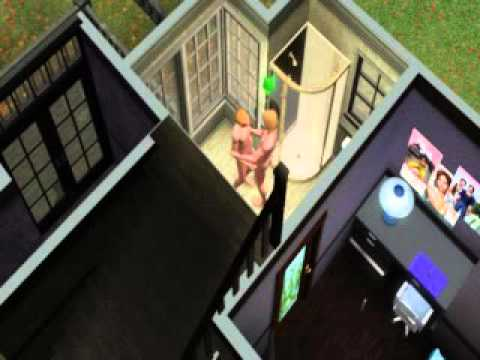 Sims 3 Woohoo!