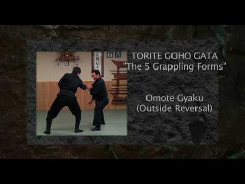 Ninja Training: Kihon Happo Demonstration, 8th Kyu, Ninjutsu, Bujinkan Image 1