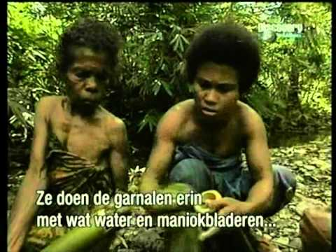 The lives of indigenous people of Maluku, on the island of Seram.