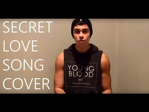 SECRET LOVE SONG - LITTLE MIX FT. JASON DERULO ANDREW LAMBROU COVER