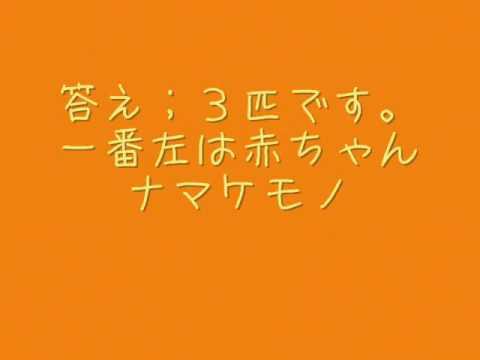 動物クイズ☆