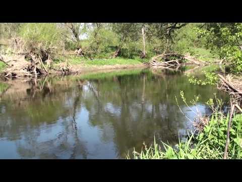 река анграпа калининградская область рыбалка