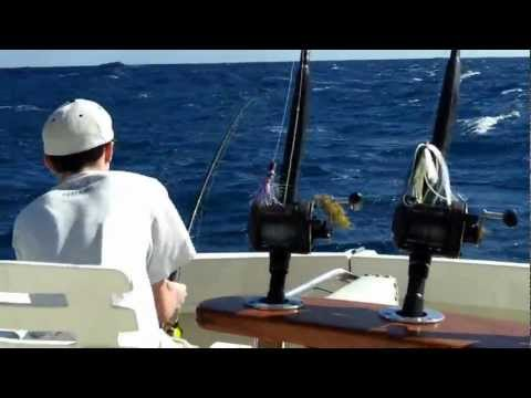 Fishing for Sailfish in Fort Lauderdale