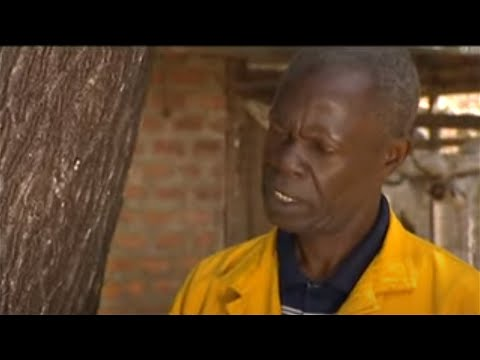 Shamba Shape Up (English) - Bananas, Chickens, Fruit Trees Thumbnail