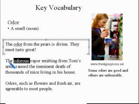 Advanced Learning English Lesson 8  Personal Hygiene  Vocabulary and Pronunciation