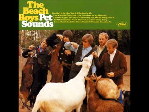 Beach Boys - I Just Wasnt Made For These Times