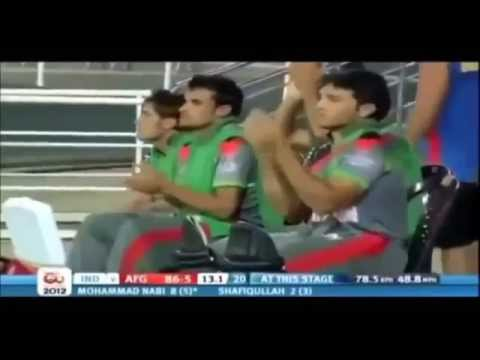 40 sixes from Afghan cricket team