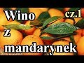 Wino Mandarynkowe Wino Z Mandarynek Zimowe Rewolucje Cz 1 mp3