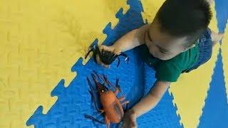 Trò Chơi CON BỌ DỪA của Các Bé Mầm Mon ❤ Trò Chơi Trẻ Em ❤ Toys for Kids