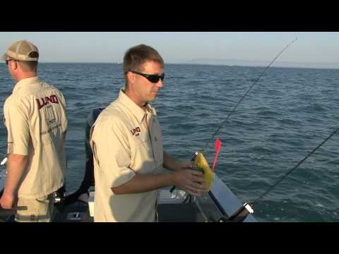Trolling Lake St. Clair for Walleye