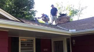 Timberline Ext Roof Inspection DEMO