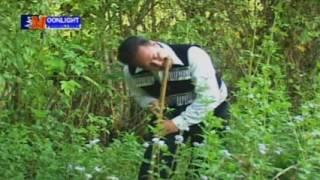 Raj Nplaim Tsis Muaj Niam Muaj Txiv -  Pob Tsuas Yaj  Release 4 12 17 001