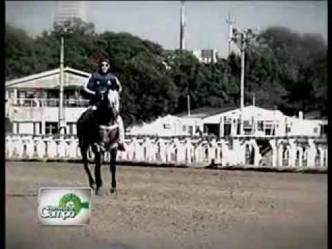 UN DIA EN EL HIPÓDROMO (09/03/2013)