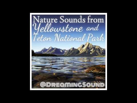 3 Hours of Nature Sounds - Yellowstone and Teton National Parks