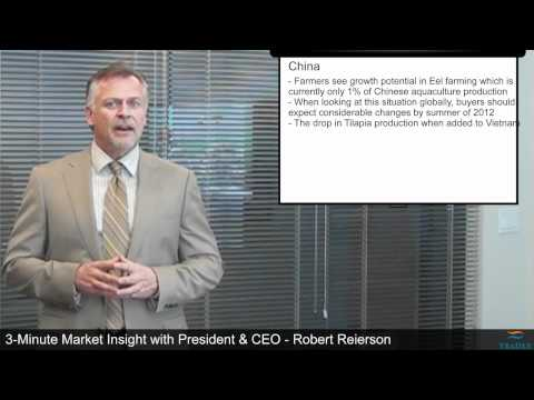 3 Minute Market Insight Ep81   Tilapia Farmers Not Re Stocking Ponds, Buyers Market For Chum Salmon