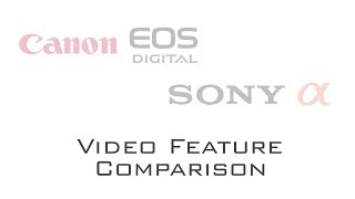DSLR Video Feature Comparison - Canon EOS 6D vs. Sony Alpha 99