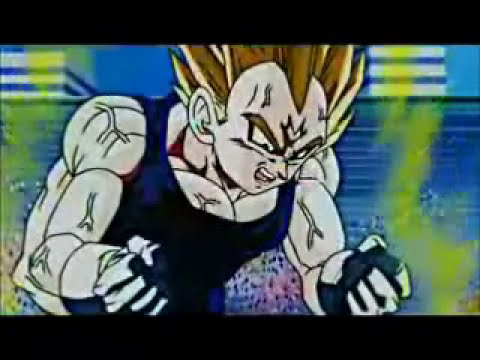 Vegeta's Speech