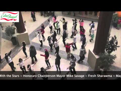 Cedar Festival Flash Mob 2013 (Official HD Video)