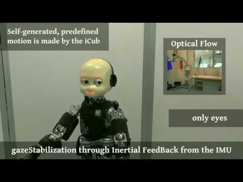 Gaze Stabilization for Humanoid Robots: a Comprehensive Framework