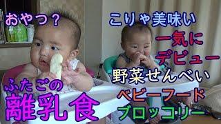 【離乳食】男女双子初めてのおやつ!ついでにブロッコリーとベビーフード!The first snacks of mix twins