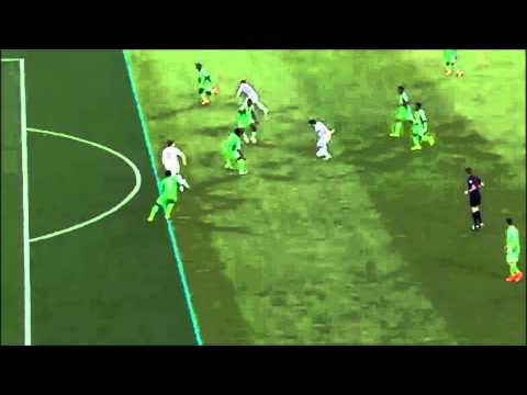 (BiH vs. Nigeria) Edin Dđeko Offside Goal - World Cup 2014