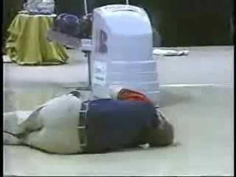 The worst break in PBA history! - 1995 TPC - Randy Pedersen vs. Ernie Schlegel