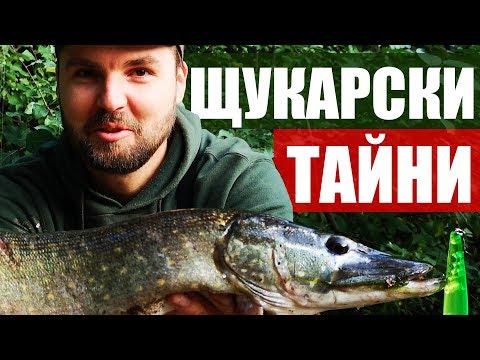 Всички ТАЙНИ за риболова на ЩУКА!!! Kъде да я открием? Проводки, примамки и цветове Pike fishing