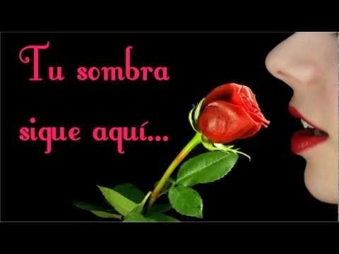 Sheena Easton -Todo me recuerda a ti- ♥ ♪ ♫ Subtitulada ♫ ♪ ♥