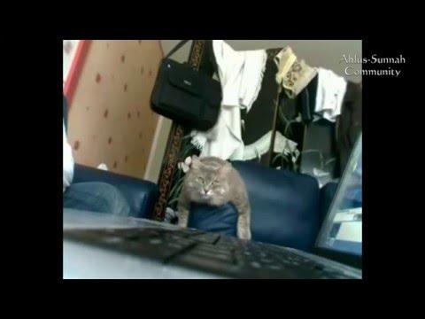 Интересная реакция кота на Азан. Не знаем чей кот / Cat's reaction to Azan