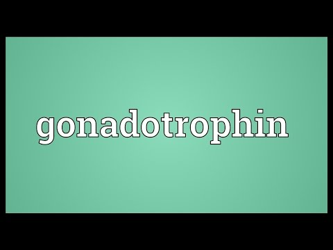 Header of gonadotrophin
