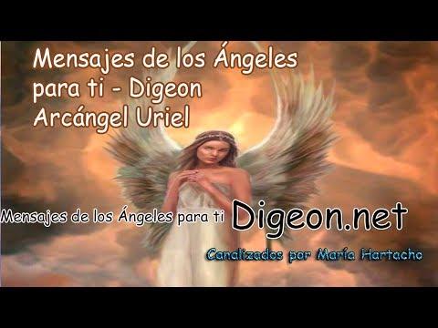 ??Mensajes De Los Ángeles Para Ti - Digeon - 12/12/2017 - Arcángel Uriel??