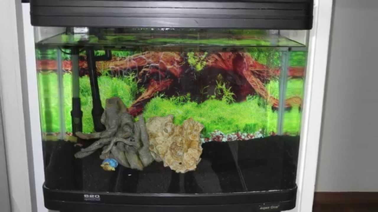 Aquarium Tank Atman Ar F620 Youtube
