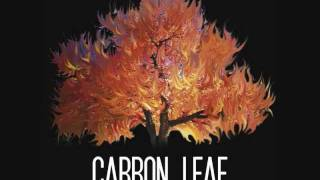Watch Carbon Leaf Miss Hollywood video