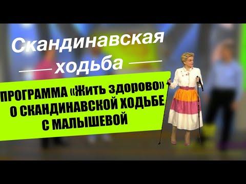 орто доктор кемерово официальный сайт